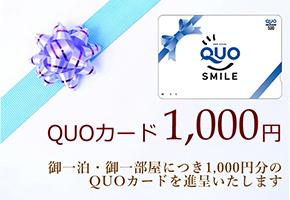 QUO1000円付プランのイメージ